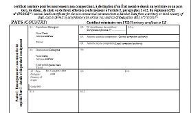 Anivetvoyage Certificat Sanitaire International