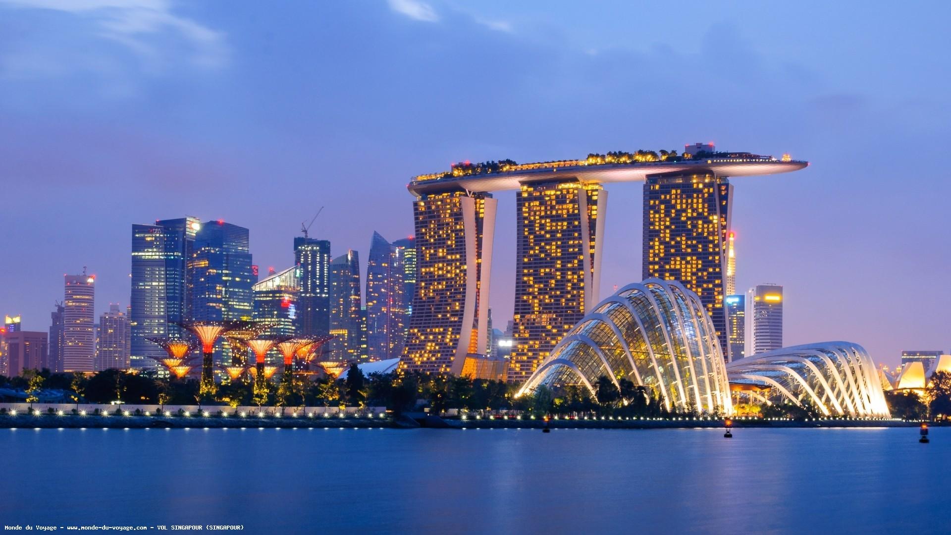 Anivetvoyage Singapour